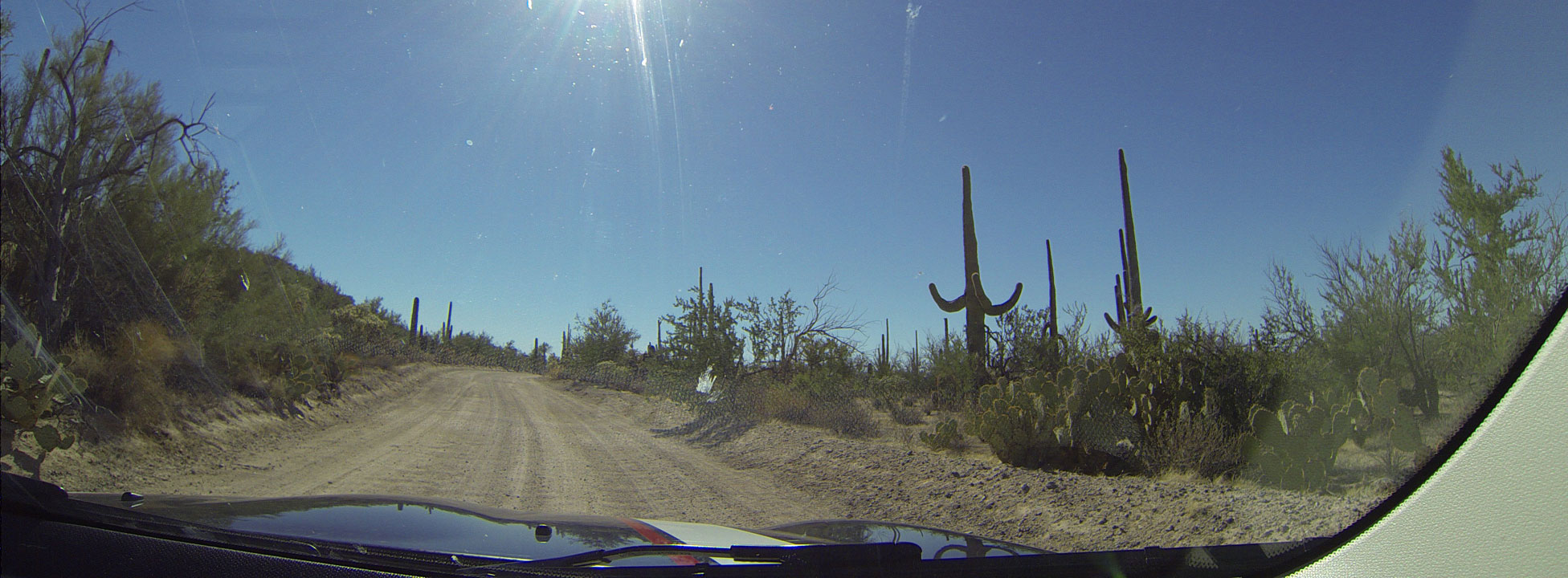 Dash cam: driving in the Sauguaro National Park near Tucson